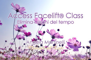 Access Facelift®